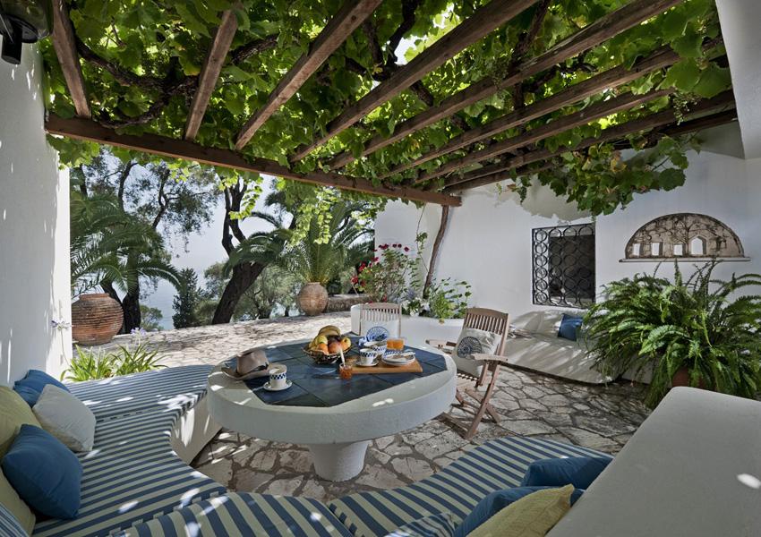 CRF_04_olive-grove-courtyard_231
